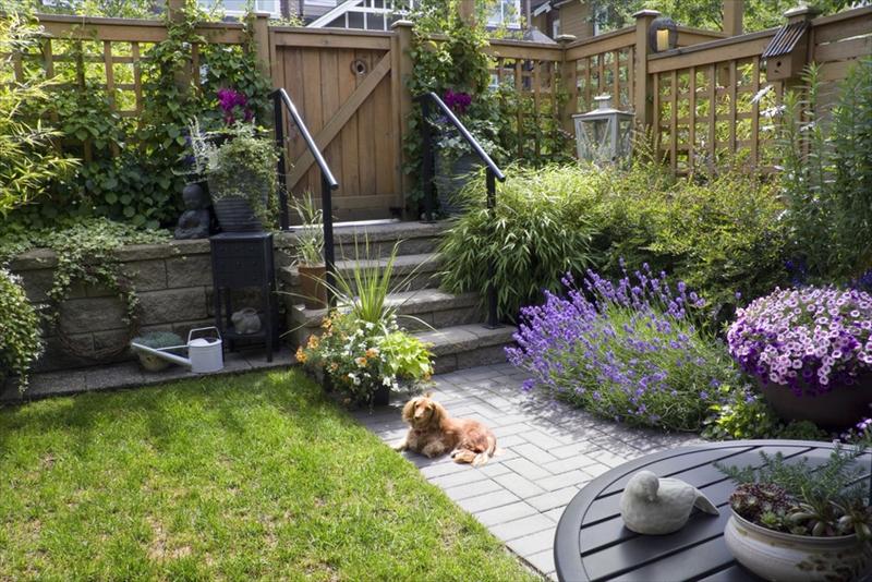 お庭のリフォーム・メンテナンス